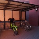 共用の自転車置場
