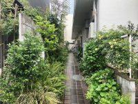 世田谷で自然を感じる暮らし【専用テラス付】