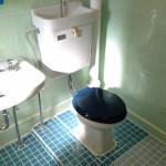 トイレのタイルもアレンジ済。