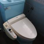トイレは新品に交換予定。